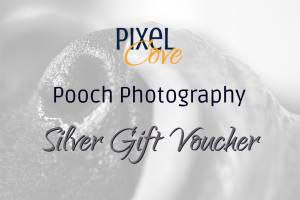 Silver Pooch Photography Voucher Gift Voucher Image