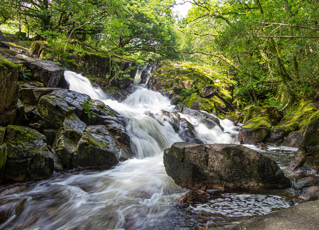 Waterfall At Eskdale Mill Photograph