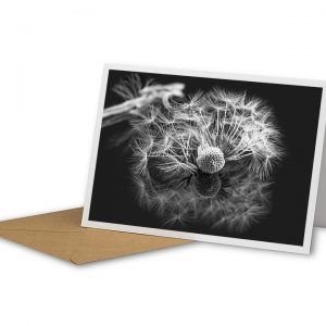 Dandelion Reflection Greetings Card And Envelope