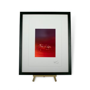 Limited Edition Red Water Droplets #6 Framed Print