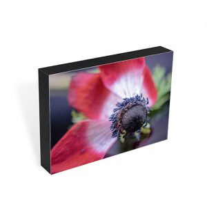 Poppy Seeds Photo Block
