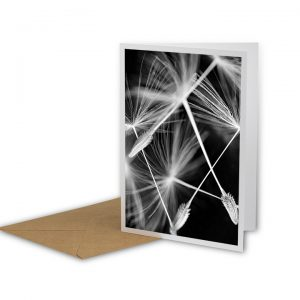 Tumbling Needles Greetings Card And Envelope
