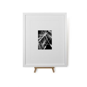 Tumbling Needles Framed Print