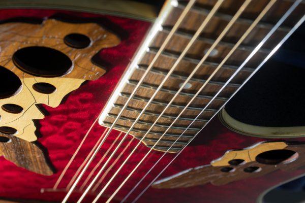 Ovation Acoustic Guitar Image